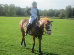 manotick polo club junior member