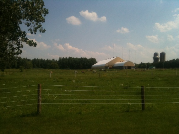 Peacful Farm Scene at 1600 Bankfield Road, Ottawa Manotick Polo Club